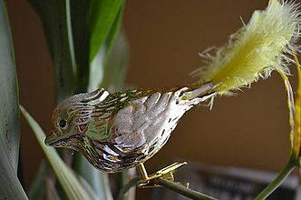 Dekorácie - Vtáčik v zlatom - 8671869_
