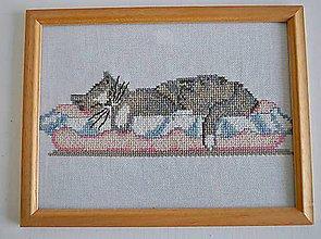 Obrázky - Vyšívaný obraz mačka - 8683830_