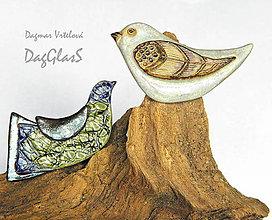 Odznaky/Brošne - Keramická brošňa ...Z vtáčej ríše... - 8684653_