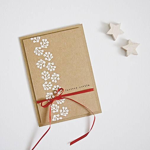 Papiernictvo - Vianočný pozdrav - zimné plody - 8690710_