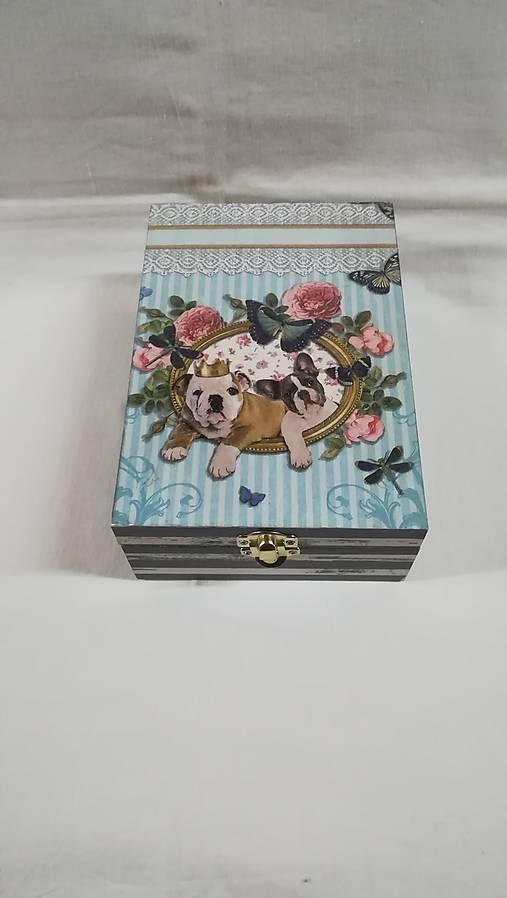 krabička - psíkovia