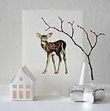 Kresby - Kolekcia zvieratiek - 8702376_