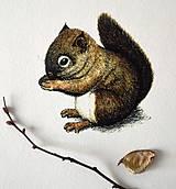 Kresby - Kolekcia zvieratiek - 8702377_
