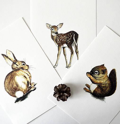 Kresby - Kolekcia zvieratiek - 8702375_