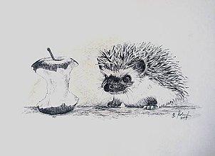 Kresby - ježkove oči!.... :-) - 8706814_