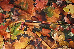 Textil - Látka Jesenné lístie - 8718751_