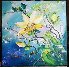 Obrazy - kvet - 8727203_