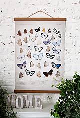 Grafika - Print na plátne BUTTERFLIES N.4 - 8752242_