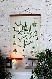 Grafika - Print na plátne CABINET IMELO - 8752008_