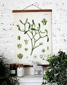 Grafika - Print na plátne CABINET IMELO - 8752023_