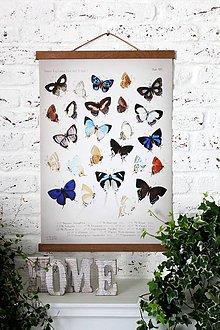 Grafika - Print na plátne BUTTERFLIES N.2 - 8752178_