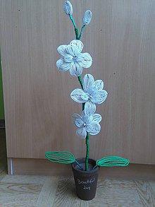 Dekorácie - Biela orchidea - 8772847_