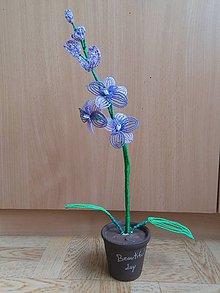 Dekorácie - Fialová orchidea - 8772864_
