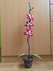 Dekorácie - Bielo-červená orchidea - 8772903_