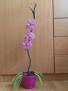 Dekorácie - rúžová orchidea - 8772922_