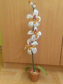 Dekorácie - Bielo-zlatá orchidea - 8772924_