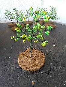 Dekorácie - Zelený malý stromček šťastia - 8772936_