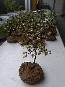 Dekorácie - Tmavo-zelený stromček šťastia - 8772949_