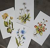 Obrazy - Bylinka v akvareli podľa želania - 8784859_