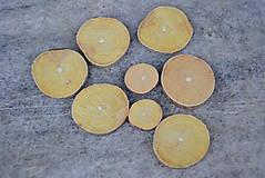 Polotovary - Žlté plátky - 8810953_