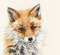 Obrazy - Líška - kresba a akvarel - 8809044_