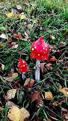 Dekorácie - Muchotrávka červená - 8806947_