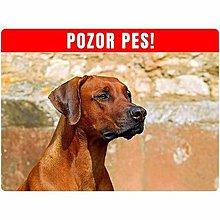 Tabuľky - Pozor pes - 8809254_
