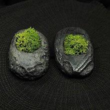 Dekorácie - miniatúrna RAKU záhrada - REINDEER MOSS - 8815256_