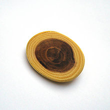 Odznaky/Brošne - Agátová oválna - 8815179_