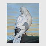 Obrazy - Vzpomínka - olejomalba na plátně - 8820248_