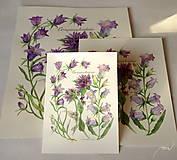 - Botanický obrázok zvončekovité, tlač, veľkosť A5  - 8837230_
