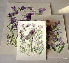 Obrazy - Botanický obrázok zvončekovité, tlač, veľkosť A5 - 8837230_