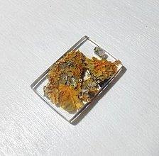 Náhrdelníky - Lišajníkový šperk - 8834743_