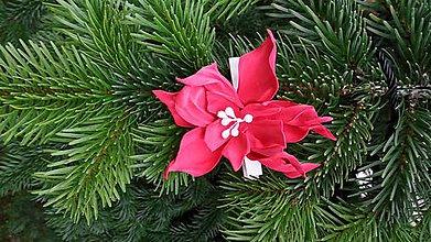 Dekorácie - Červená vianočná ruža - 8840923_