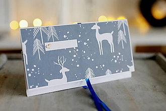 Papiernictvo - Scrapbook vianočná obálka na peniaze - 8845339_
