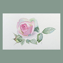 Obrazy - Růže Eden rose - originál, akvarel - 8842055_
