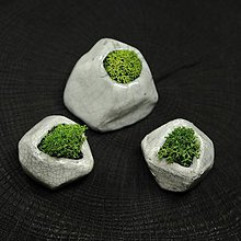Dekorácie - miniatúrna RAKU záhrada - REINDEER MOSS - 8853974_