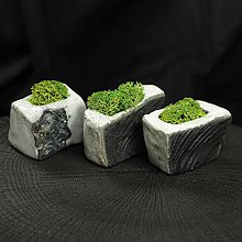 Dekorácie - miniatúrna RAKU záhrada - REINDEER MOSS - 8854047_