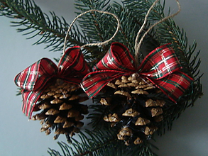 Dekorácie - Vianočné šišky s farbami  Vianoc - 8851536_
