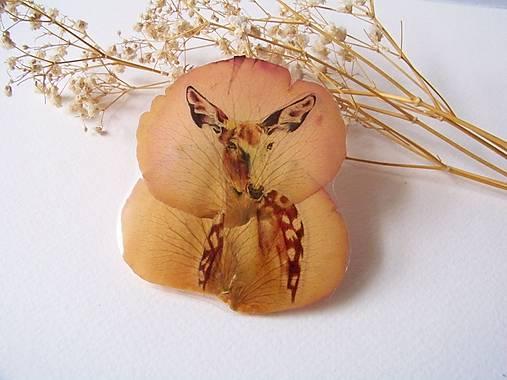 Brošňa: Na ružiach ustlané