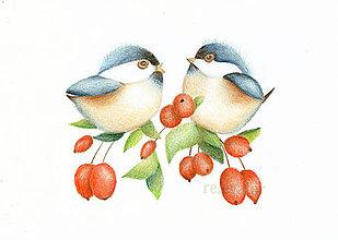 Kresby - Vtáčikovia - 8866131_