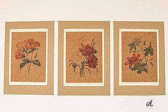 "Obrázky - Sada akvarelu ""Natur Botanical"" (A.) - 8869990_"