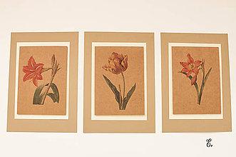"Obrázky - Sada akvarelu ""Natur Botanical"" (E.) - 8870007_"
