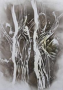 Obrazy - strom2 - 8882473_