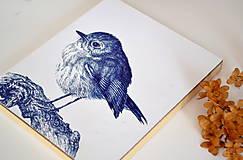 Kresby - slávik červienka (print na drevenom ráme) - 8890316_
