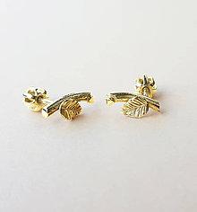 Náušnice - Zlaté vetvičky - 8914064_
