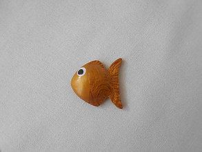Magnetky - zlatá rybka magnetka - 8912207_