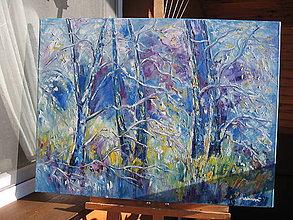 Obrazy - Zimný les - 8922948_