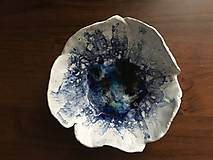 miska v modrom