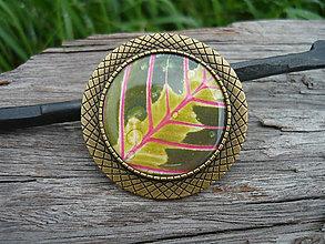 Odznaky/Brošne - !VÝPREDAJ! Brošňa Tropical leaf + darčeková krabička ako bonus :) - 8935097_